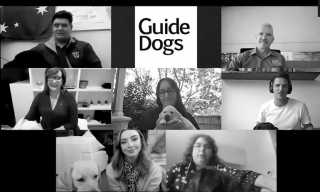 guide-dogs-zoom